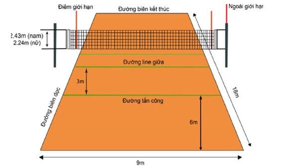 Tìm hiểu kích thước sân, trụ, lưới bóng chuyền tiêu chuẩn